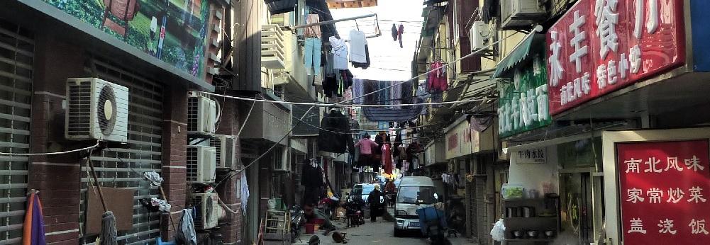 Den urbane hjerne og mental sundhed i storbylivet: Et interview med Nikolas Rose