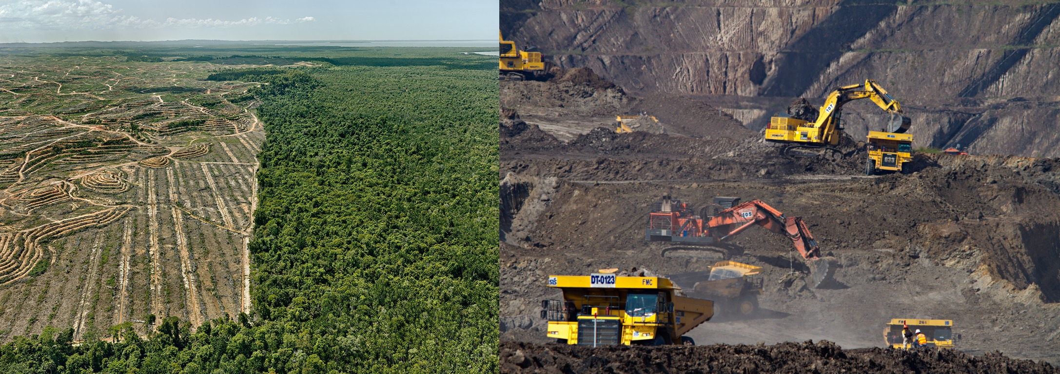 Palmeolieplantage i stedet for skov, som er afskåret, minedrift i fuld gang på billedet til højre