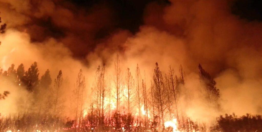 Fuld skovbrand, Californien, foto taget af U.S. Department of Agriculture